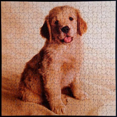 Ravensburger Puzzle - Golden Retriever Puppies - 500 pieces XL